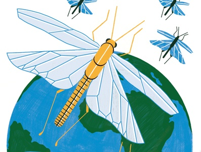 Plague of Locusts - Radio Times insects travel illustration design colour print editorial illustration