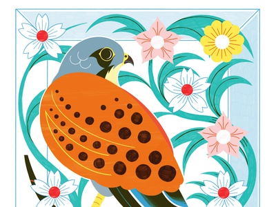 A Kestral for a Knave - RIsograph Print nature risograph editorial design colour print editorial illustration
