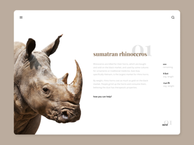 Endangered species / sumatran rhinoceros light webdesign endangered animal interface typography minimal website ux ui web design