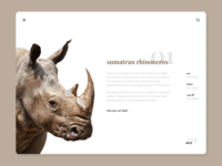 Endangered species / sumatran rhinoceros