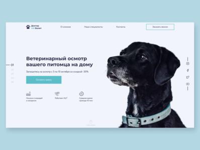 Vet clinic mainpage animal user experience user interface dog veterinary pet typography minimal flat ux ui webdesign