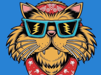 Street Cali Cat