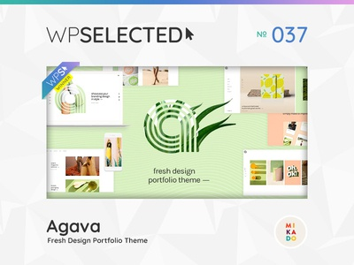 WPSelected Winner Series 037 awards rewards gallery agency portfolio photography webdesign website wordpress web ux ui template theme design creative