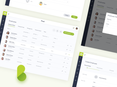 Paybooks Employee Screens employee inputs popup table tax design icons paybook dashboard ui ux