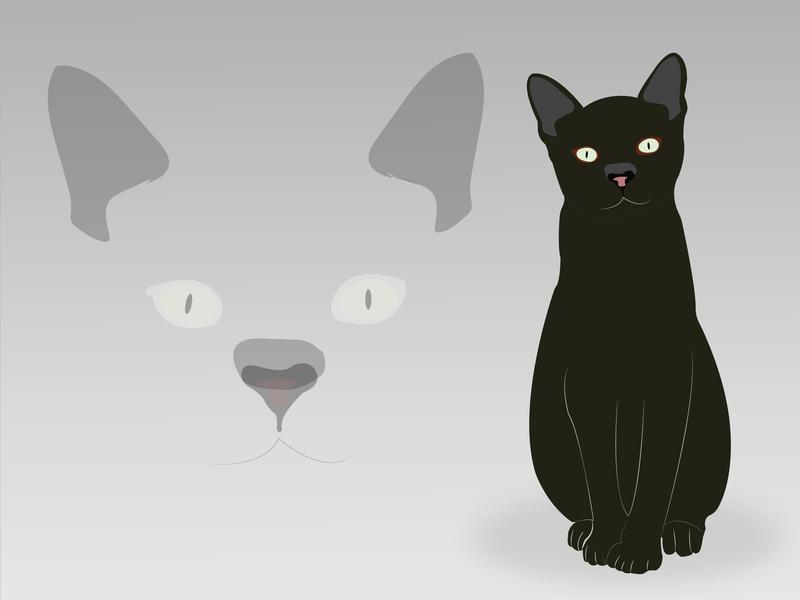 Blck Cat cats black cat cat design vector graphics illustration