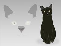 Blck Cat