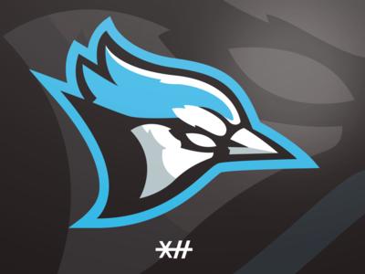 Blue Jay Mascot Logo