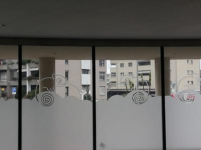 Chamaleon window design chamaleon window