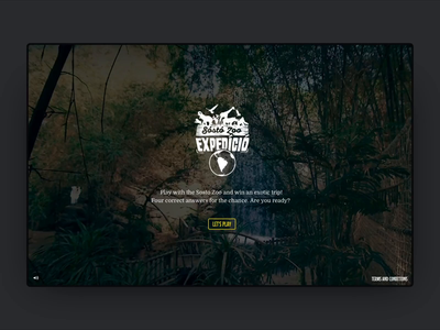 Sosto Zoo Microsite interactive interaction website web typography motion ux ui design animation
