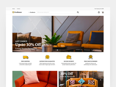 Profibutor webshop interactive ecommerce interaction web animation ux website ui typography design