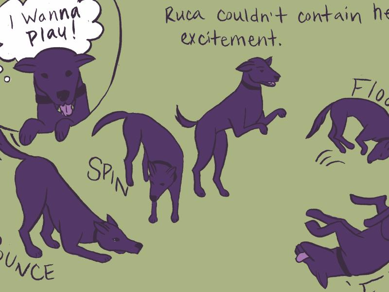 Illustrated dog adoption book comic dog illustration