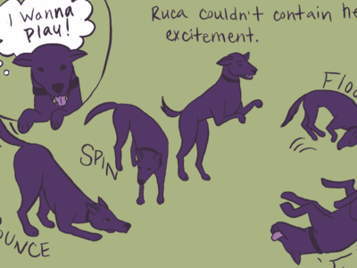 Illustrated dog adoption book