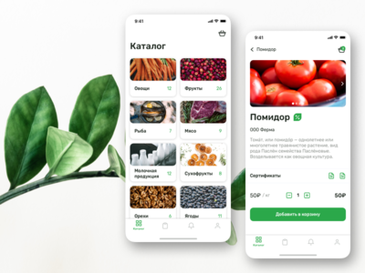 Fresh Online Store online shop store categories cards catalog green product shopping app shop ecommerce