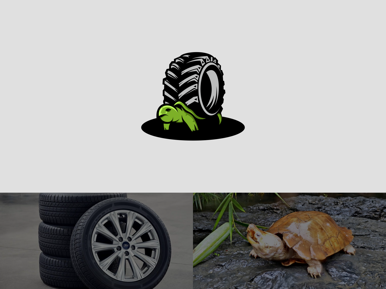 turtle tire identity clean animation vector type sketch minimal logo lettering illustrator illustration icons icon graphic design flat design character branding brand art