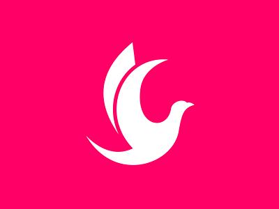 Pigeon logo design bird logo pigeons pigeon vector flat branding design icon logo