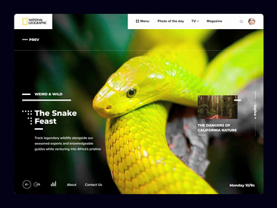 National Geographic Promo Site ae after affects gif nature magazine animals wild national geographic e-commerce web ux slider typography ui design category page application animation