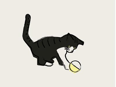 CAT TEMPORAL SHELTER ⚡🐈 angelspinyol vilafranca vector branding logo design cat illustrator colors graphicdesign