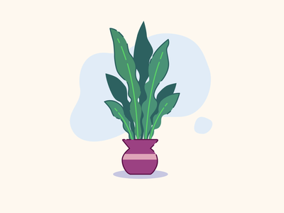 Another house plant! design illustration graphic design motion graphics animation