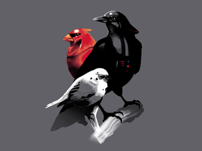 Avian Empire starwars star wars darth vader stormtrooper the yetee imperial guard birds