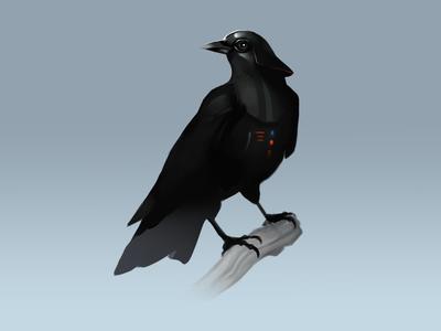 Crow Vader birds darth vader star wars starwars