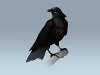 Crow Vader