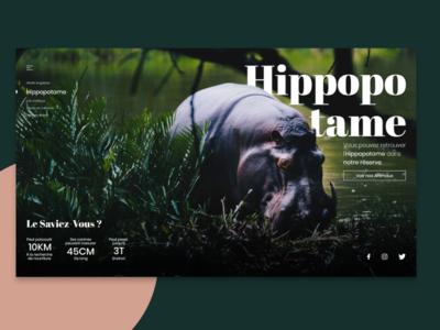 WebDesign - Hippopotamus