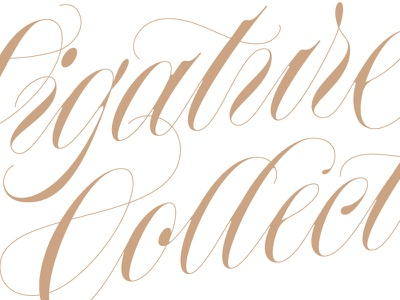 script script copperplate type calligraphy lettering
