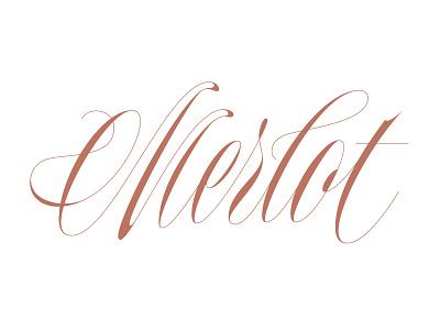 Merlot elegant copperplate wine scriptlettering calligraphy script handtype type lettering