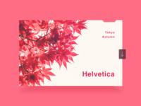 Tokyo Autumn Helvetica