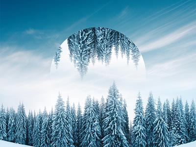 Winter Reflect 2 trees snow winter desginer photoshop design texture color art
