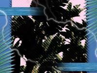 Wave Thunder