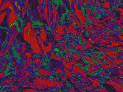 Texture Exploration liquify