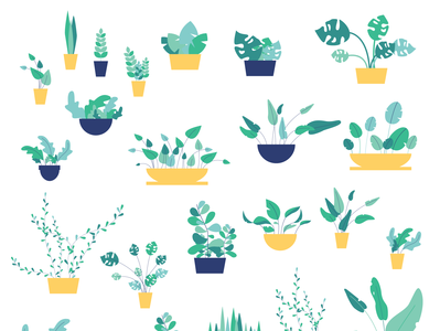 Collection of plants