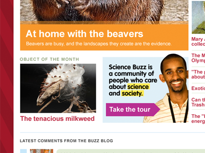 Science Buzz redesign homepage mockup beavers science buzz