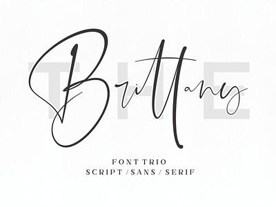 The Brittany // Font Trio stylish simple signature script natural minimalist luxury logo feminime fashion exclusive elegant classic casual business