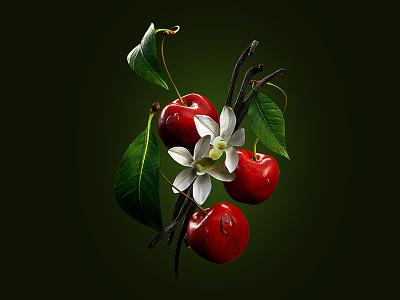Cherry Vanilla flavor juicy delicious fresh fruits vanilla bean vanilla cherry fruit illustration c4d 3d