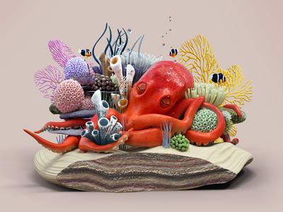 Sleeping Octopus cross section ocean sea coral octopus animal illustration c4d 3d