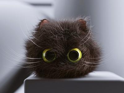 Fuzz Cat Ball