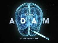 BSDS: The Subdivision of Adams