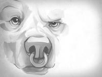 Greyscale Bear Face