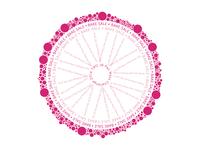 Whole Buncha Circles