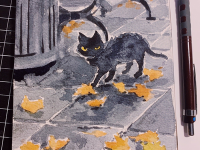 Austria Neighbor cat nyc street cat street kitten kitty illustration cat