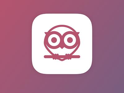Owly App Icon owl ios owly icon app icon