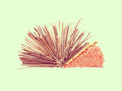 Pie Chart  illustration jhadoo photo infographic aapsweeps broom