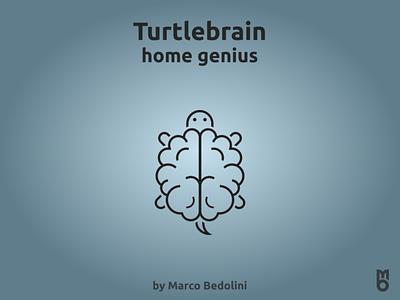 Logo: Turtlebrain design logo branding