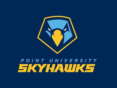 Point University Skyhawks geometric eagle bird hawk design illustration typography football sports logo logo type sports