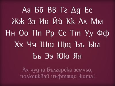 Rotis - Bulgarian Cut