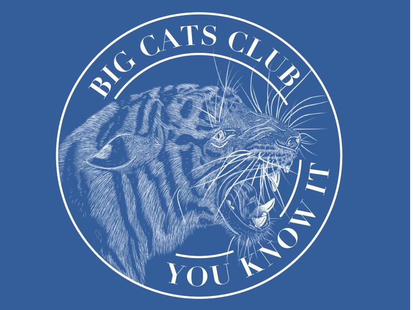 Big Cats Club Tiger Sticker safari jungle badgedesign roar tiger sticker mule sticker design sticker badge logo typography illustration hand lettering lettering vector design