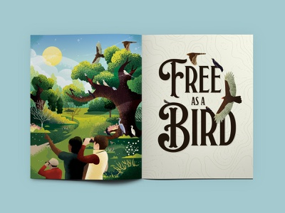 Texas Parks & Wildlife Magazine ad magazine illustration birding bird watching bird texas