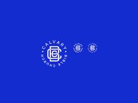 Logo scaling dribbble